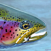 Fly Fishing Paintings of Doug McKnight